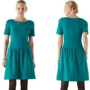 WHBM Teal Green/Blue Fit & Flare mini dress Size 6